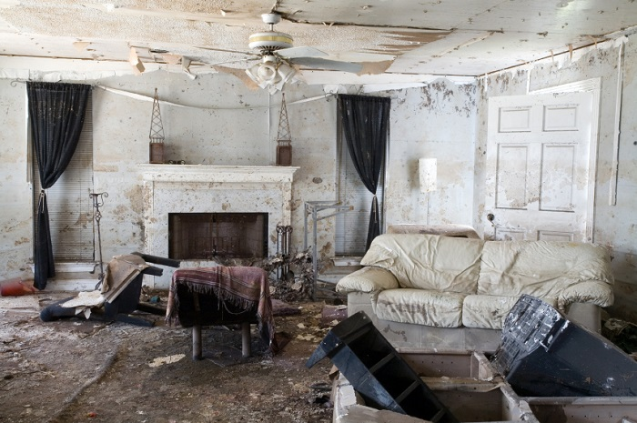 image of home with severe mold damage